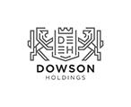 Downson Holding